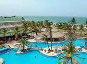 Hoteles SunSol incrementó 500% numero reportes TripAdvisor Purple