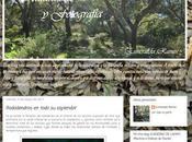 Entrevistas blogueras: esmeralda ramos