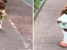 vídeo viral perro camina erguido divertido cómo crees