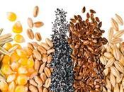 semillas recomendables alimentación ciclistas