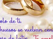 Anillos matrimonio para romántica postal boda.