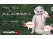 total Axolotes mexicanos Fotomatón