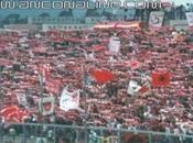 Curva Nord Ancona, Ultras Ancona