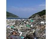 Petición compartir MILLON FIRMANTES para salvar Mediterráneo