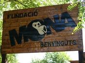 Fundació MONA Centro recuperación primates