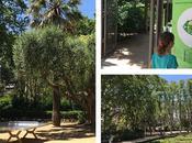 Pinhan Café jardines Turó Park