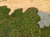 pises hierba…