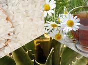Estudiante UASLP crea polvo relajante muscular base arroz, tequila manzanilla