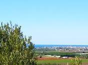 Talleres ibéricos Puig Benicarló.