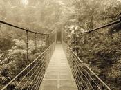 puentes caídos