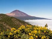 Subir Teide teleférico: visita gran volcán Tenerife