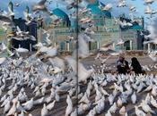 Fotográfia Steve McCurry, Afganistán.