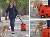 Nuestros indispensables para viajar niños