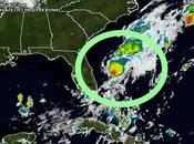 """tormenta """"Emily"""" debilita depresión, tras tocar tierra Florida(EE.UU)"""