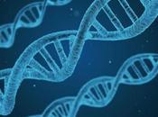 Crean Primeros Embriones Humanos Modificados Geneticamente