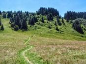 Biogradska Gora, paraíso medio montaña Montenegro