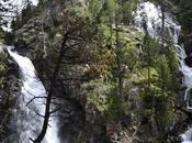Sendero Botánico Gorgas Alba