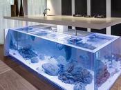 cocina convertida acuario diseñador holandés