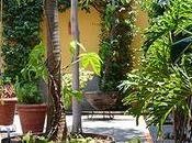Casa Patios, hotel tradición Sayula
