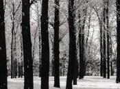 Jardín Invierno Valerie Fritsch
