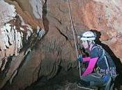 Primera cita Oestophora ebria cuevas