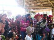 Destacan labor brigadas conjuntas Anap-FMC cooperativa Manatí