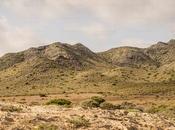 Parque regional calblanque. cartagena (murcia)