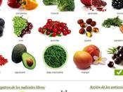 secreto piel arrugas-los antioxidantes