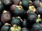 fruta exótica descubrí estando Guatemala