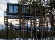Diseño nórdico, naturaleza auroras boreales Treehotel