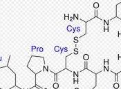 Química Amor