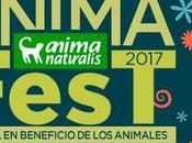 Animafest 2017. Festival beneficio animales