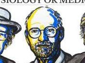 Premio Nobel Medicina 2017 otorgado ideas sobre reloj biológico interno