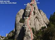 Esparraguera Roca Gris