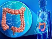 Llega Ecuador novedoso tratamiento para pacientes adultos enfermedad inflamatoria intestinal