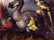 Tres siglos después, dodo reivindica través ciencia