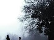 Como bosque noche Álvaro Bermejo