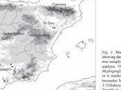 Importantes hallazgos medio subterráneo Sevilla