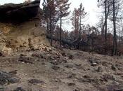 Incendios forestales. monte peligro
