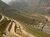 Sapa Trekking aldeas montañas