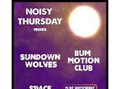 Sundown Wolves Motion Club perro parte atrás coche