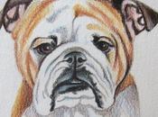 Dibujos coloreados perros dibujados para imprimir color