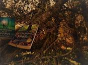 libros imprescindibles amas naturaleza