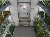 Jardinería espacial: Estudios vegetales espacio