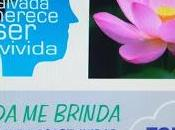 Almadén solidario: campaña ayuda para Belén Tejero