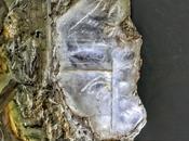 Mina Condenada, España lapis specularis, cristal Hispania