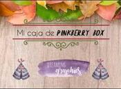 caja literaria pinkberry