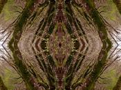 Venerdí Photosatriani