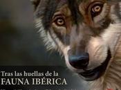 """marcha Edición """"Tras huellas fauna ibérica"""""""