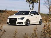 ¿Cuantos Audi habéis visto puro estilo Stance?